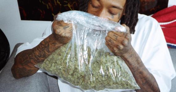 cannabis.420.bizwiz